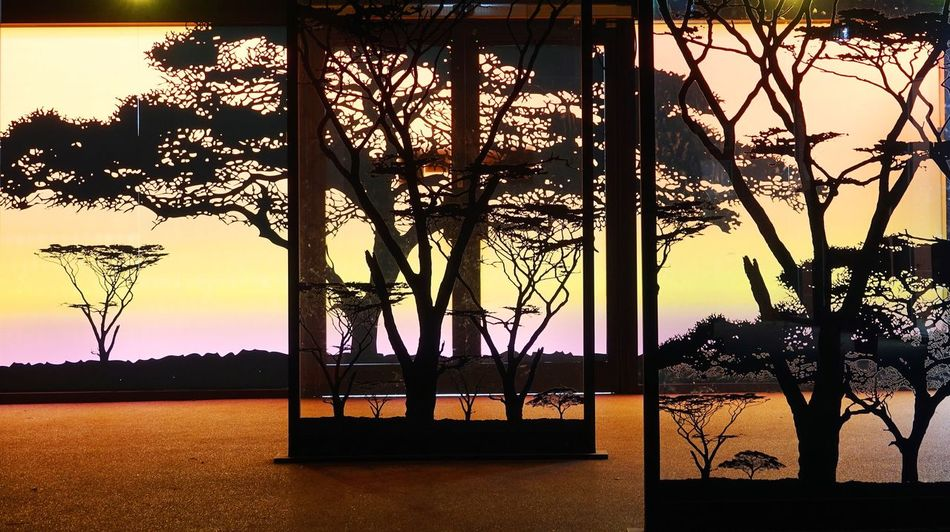 Artificial landscapes Sunset Tree Sky Sunlight Outdoors Nature No People Silhouette River Bridge - Man Made Structure Architecture Water Day Glass