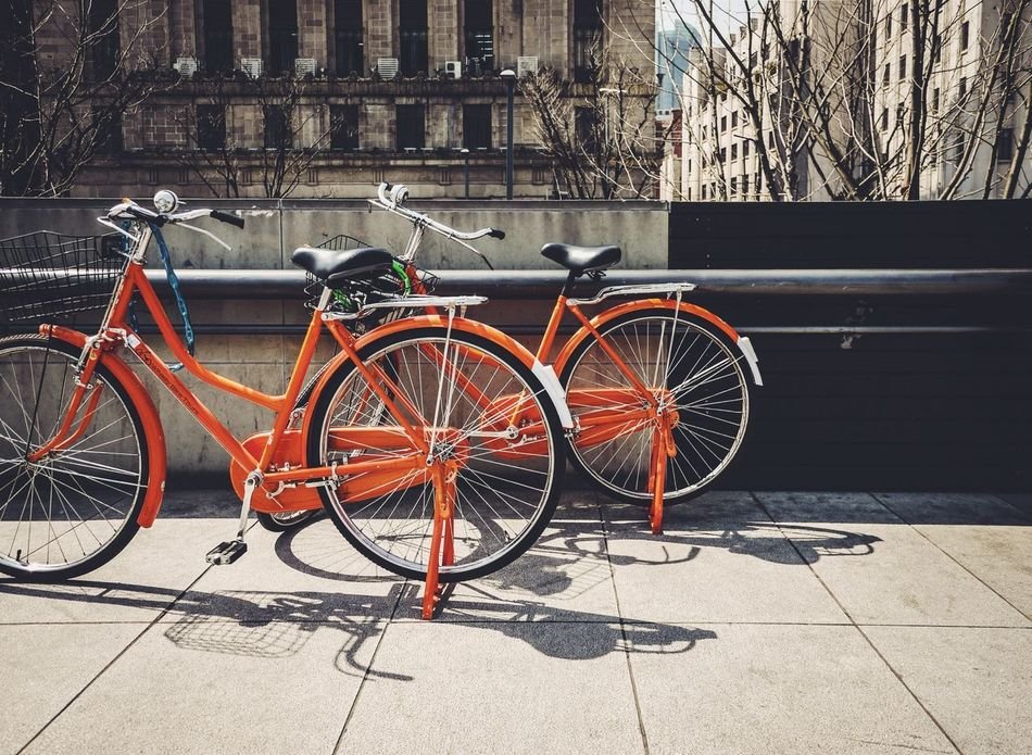 Beautiful stock photos of bike, Architecture, Bicycle, Building Exterior, Built Structure