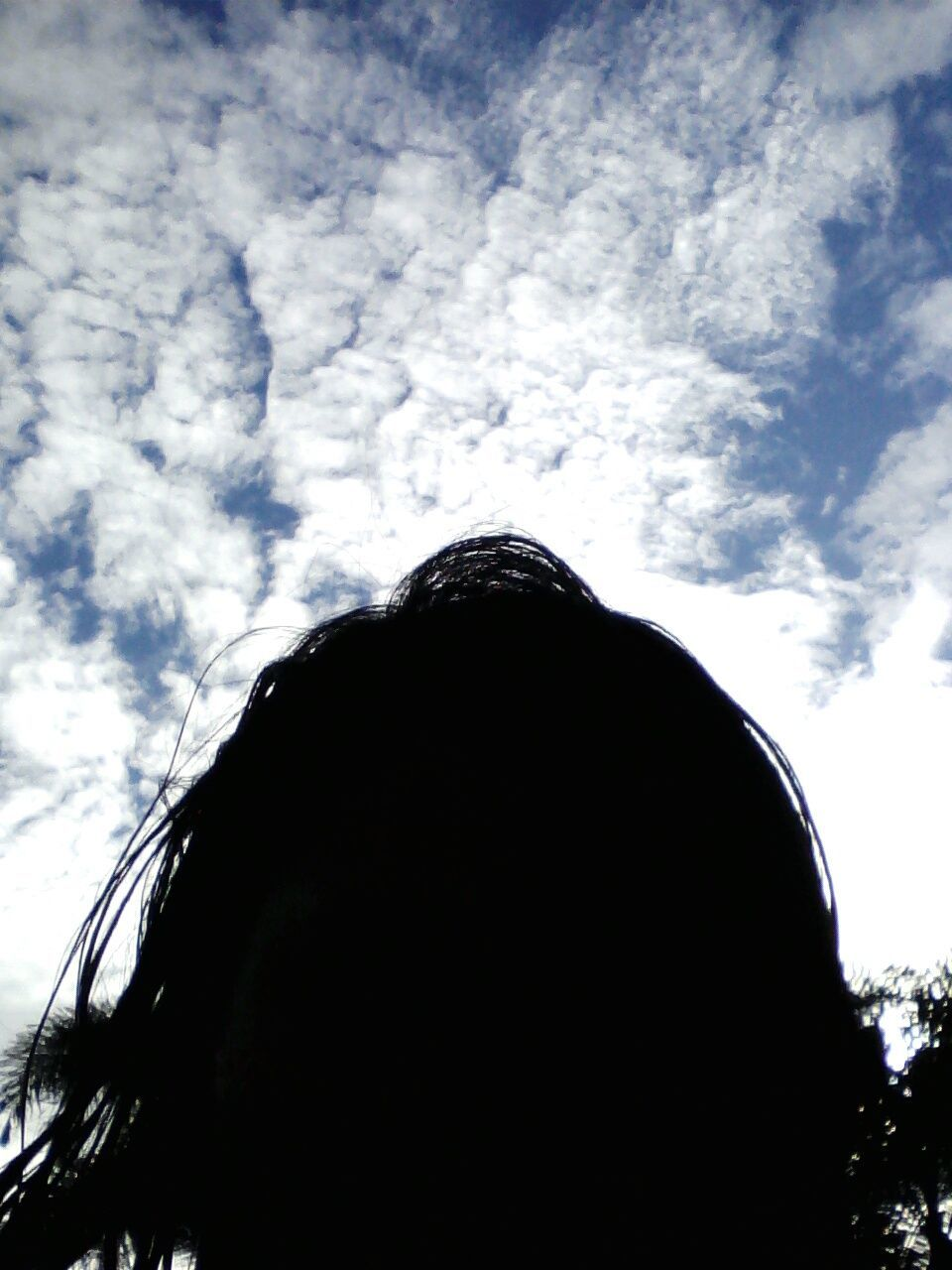 sky, low angle view, cloud - sky, one person, day, silhouette, real people, outdoors, tree, nature, close-up, people