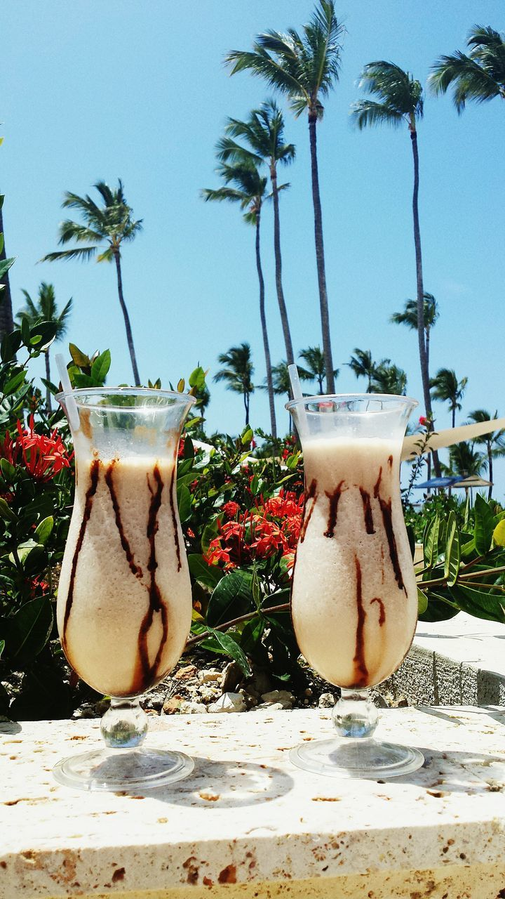 Glasses Of Cocktail On Retailing Wall With Palm Trees In Background