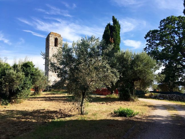 Italy Island Castle Travel Paths Trees Historic IPhone