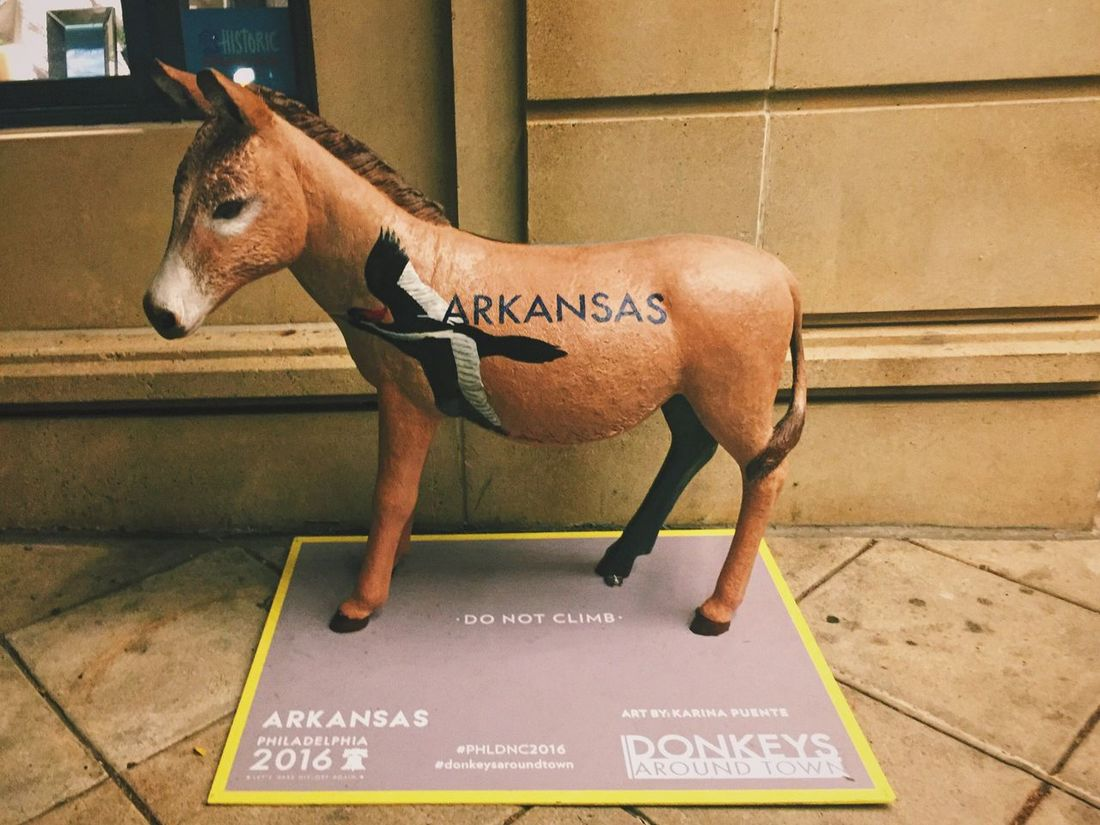 Public Space/ City Owned Art Arkansas Donkey Artists design Arkansas Arkansas Donkey Donkey Donkey Statue Painted Sculpture Bird Paintings Public Art DNC DNC2016 Animal Representation Mule Donkeys Around Town Donkeys Public Places Public Art Installation What's On The Roll