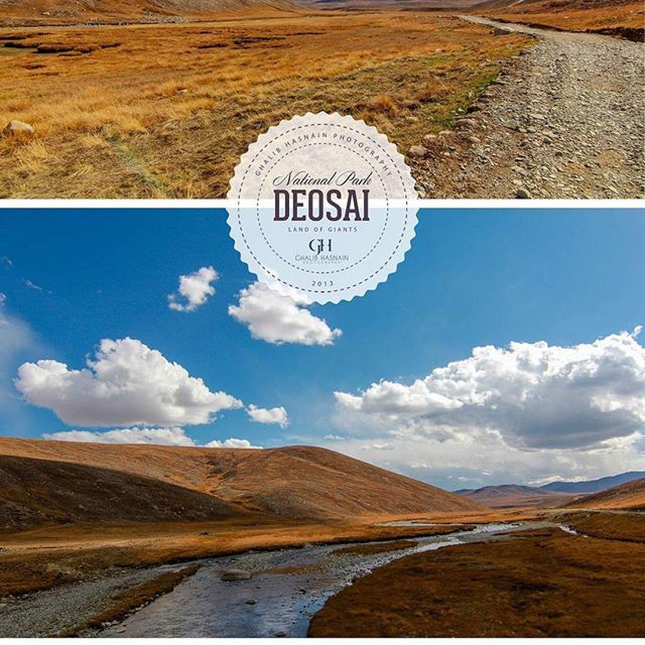 From the Archive of 2013 DEOSAI Deosai Pakistan Skardu Gilgitbiltistan Autumn Roadtosheosar Ghalibhasnainphotography Ghalibhasnain Plains VSCO Nature Beautifulpakistan @Pakistan