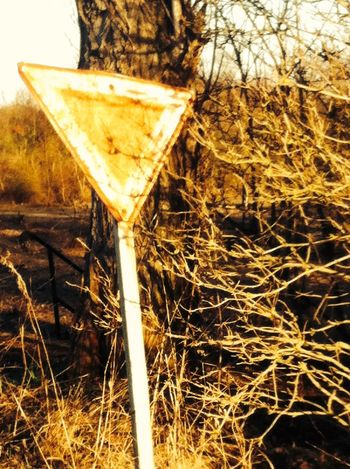 Traffic Traffic Sign Post Apocalyptic Old