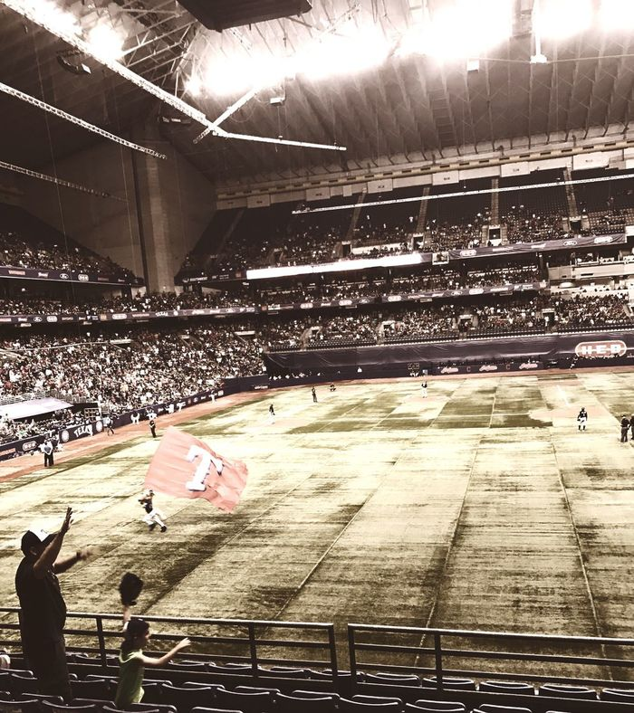 Spectator Fan - Enthusiast Stadium Sport Rangers Baseball