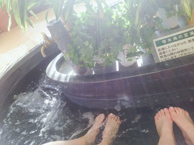 Potted Plant Plant Person Water Japan Japanese Culture Onsen Relaxation