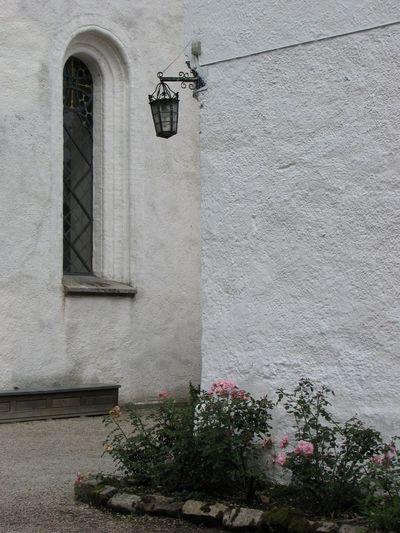 Sjöbo Tranquillity White Wall Window Whitchurch Sweden Rosebushes Rosebush