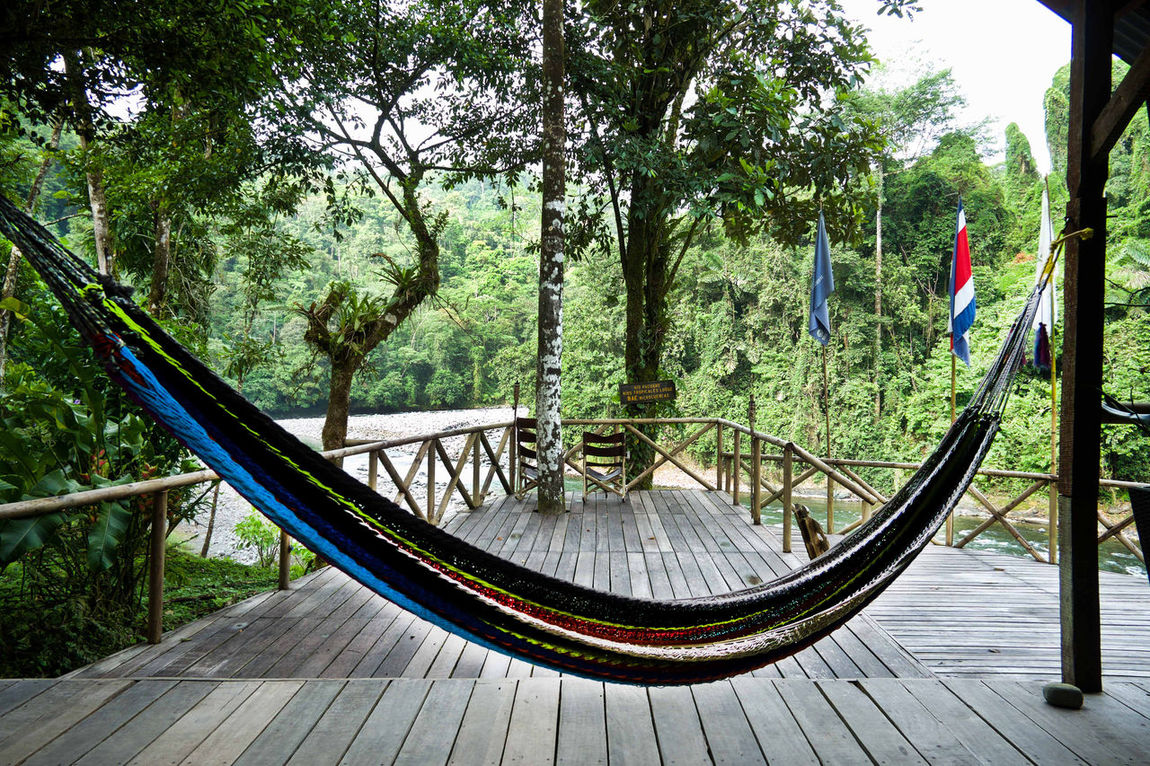 Back To Basics  Costa Rica Day Eco Tourism Ecofriendly Ecolodge EyeEm New Here Hammock Hammock Life Hammock Time Hammocklife Hammocks Hammocktime Nature No People Of The Grid Of The Ground Off The Beaten Path Outdoors Railing Rainforest River Riverview Riverviews Tree