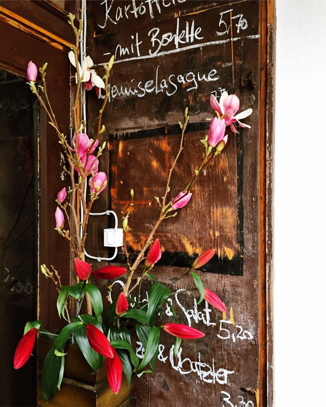 Flower Chalk Flower Head Lilies Wood