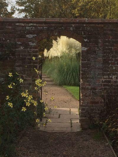 Gateway Into Garden see through