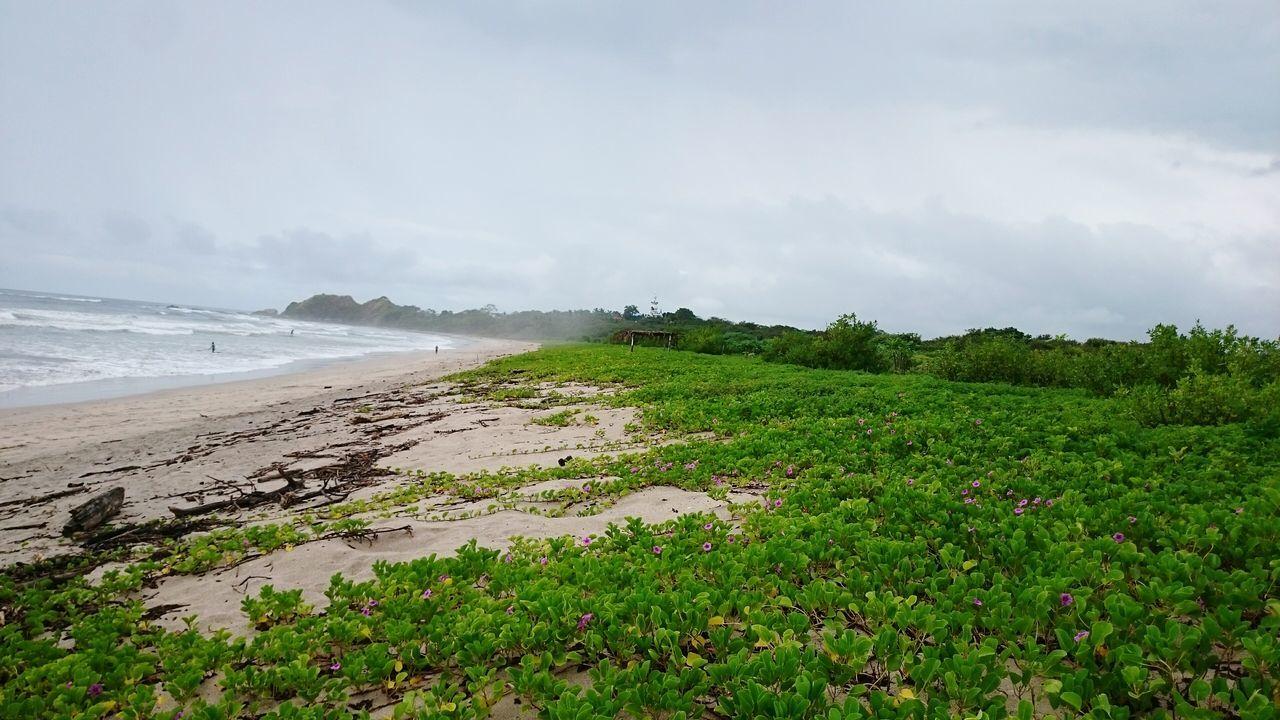 Sea Nature Beach Outdoors Water Day Guanacaste  Costarica Costa Rica Pacific Travel Destinations Sand Puravida Pura Vida ✌