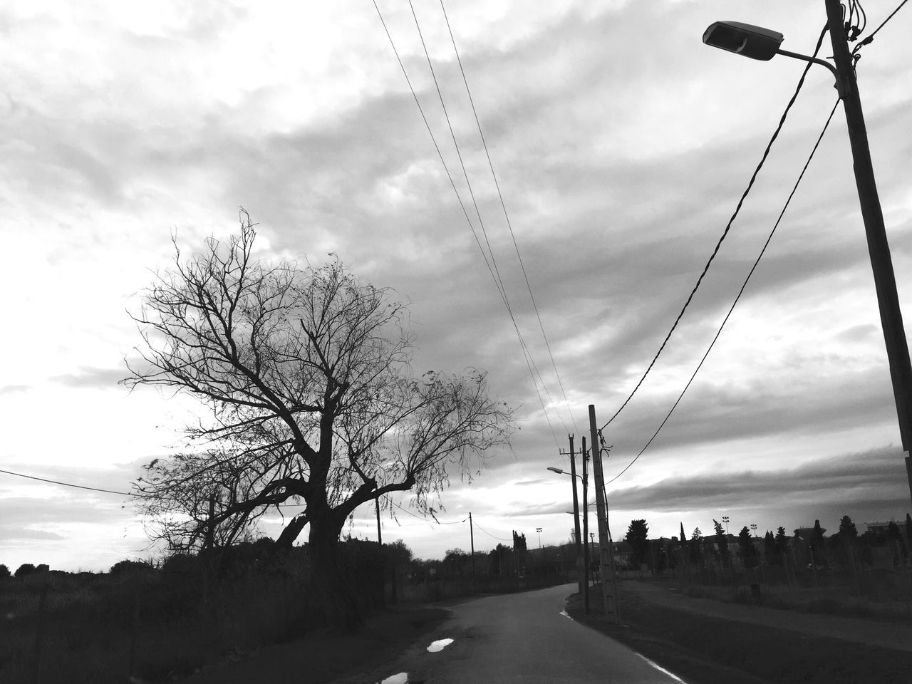 Sky Tree Power Line  Bare Tree Electricity Pylon Cloud - Sky Road Cable No People Outdoors Power Supply Electricity  Day Connection Nature Blackandwhite EyeEm Bnw Eye4photography  EyeEm Gallery
