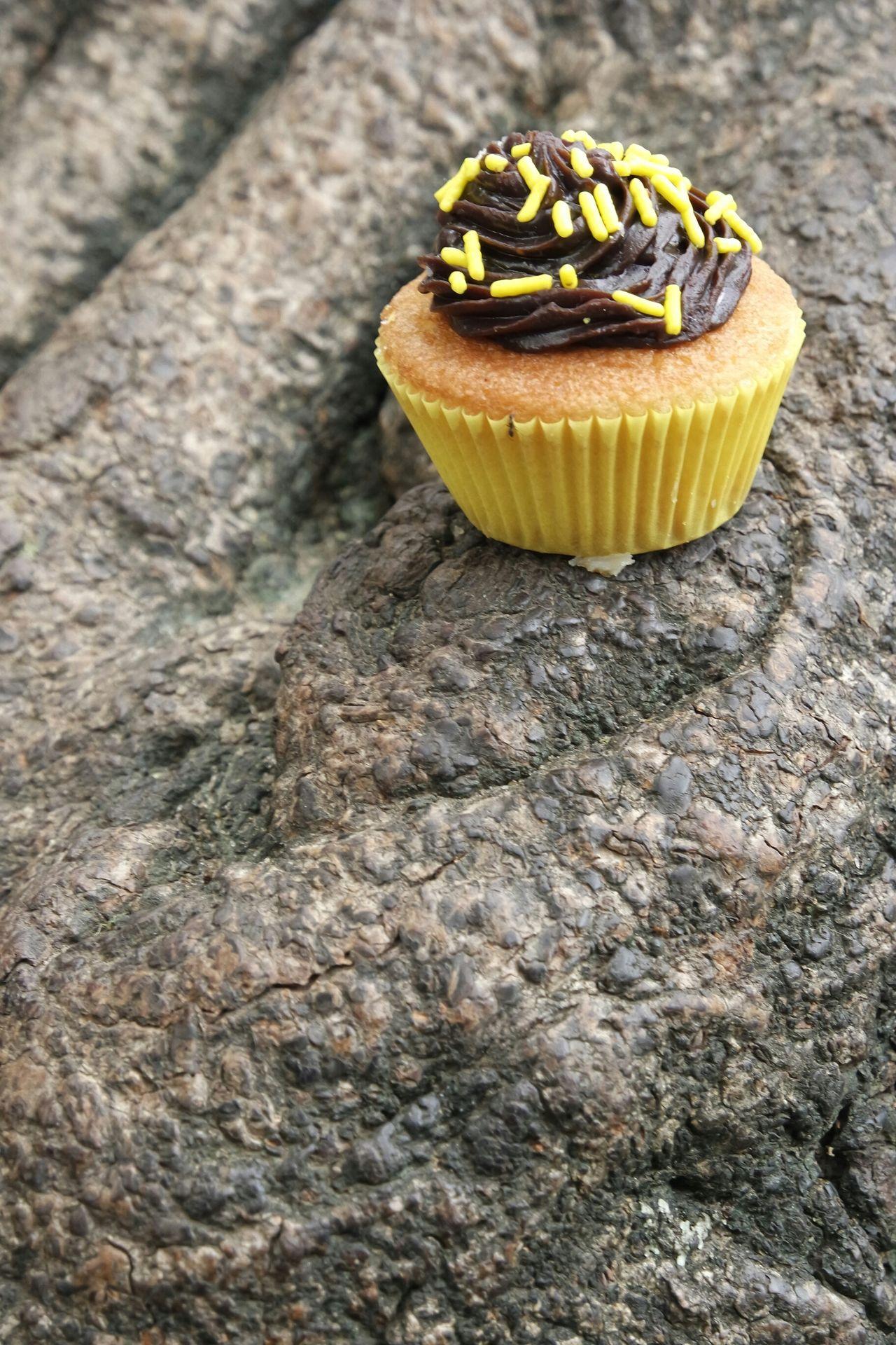 Beautiful stock photos of cupcake, Branch, Brazil, Close-Up, Cup Cake