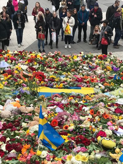 In Stockholm tonight. Flower Real People People Large Group Of People Outdoors Crowd