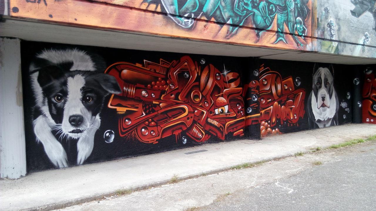 EyeEm Gallery Art Is EverywhereBackgrounds Architecture Architecturelovers Murales Graffiti No People MOS 2016 (Meeting Of Styles) Graffiti Art Street Art School Wall Dogs Dogs Of EyeEm Muralesart Muraleslove Art Is Everywhere