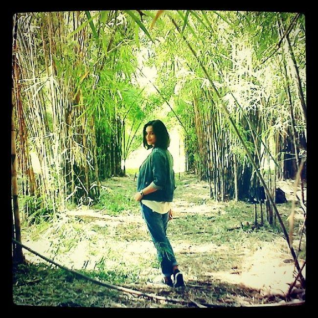 Hello @instagram yesterday we take part in Wwim9 54 people gathered together. At instameet this time organically all across the world for Instameet Worldwide by @instagram. In addition to gather, meet each other from connecting online and forming relationship in the real world. We also conduct tree planting activities and clean-up the forest. We are : @azethmdr @sidiahsari @eld0 @insan_btw @nomedia07 @jalurahditia @anaspituwolu @irakibo @tottid @wachidhabibi @bang_usb1924 @dieckyfreaks @babangvandy @tamaramanaf @jejaklangkah @minusblindspot @cak_soekier @neynarahma @primakirtti @dresesputranama @sukabangben @ahmadzuhriadi @ronce_ink @virdoniofila @wintondanardi @dicobaskoro @harzone @farabyadvisda @miss_rama @agreyhan @ahmadalifikri @nurmalisafar @suatupagi @yarsano @agustianprtama @karinkurniawan @fandhyriizal @RMdinda @haniffanbaihaqi @chrisazure @heru_image @ninazhafirah @divohafidz @pipitfitter @alvian_19 @mu2_vrach @ekoprayitno_dw @si_igit @cesario39 @diyan_fadani @burcky @Agus_febrianto @hendywcksn @odik_u1i For another amazing picture please visit WWIM9_bambooforest thank you . Wwim9 WWIMsurabaya dailyinnature instameetindonesia instameetsurabaya exploresurabaya