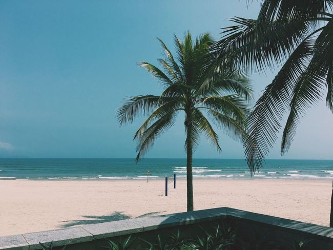 Beach Beautiful Surroundings Nice Atmosphere Resting Relaxing Good Vibes Vscogood Vscocam VSCO Hyatt Regency Da Nang Showcase March Vietnam Vacation Hello World Chilling Hotel Summer Beach Life Beachside Beachphotography Beach Photography The Great Outdoors - 2016 EyeEm Awards