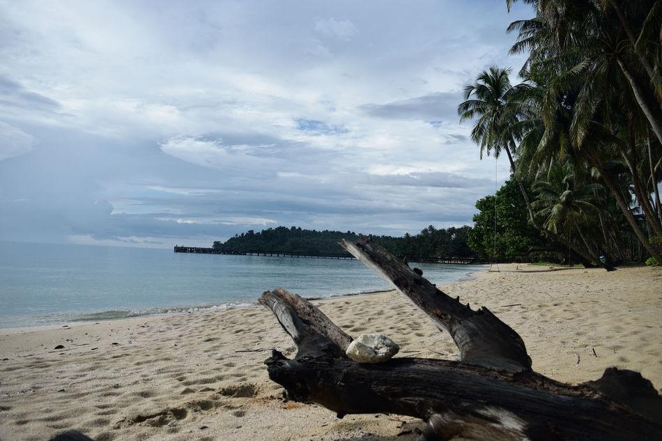 Backpacking Beach Cloud - Sky Day Ko Kut Island Koh Kood Nature Nikon No People Outdoors Paradise Beach Sea Sky Thailand Tree Water