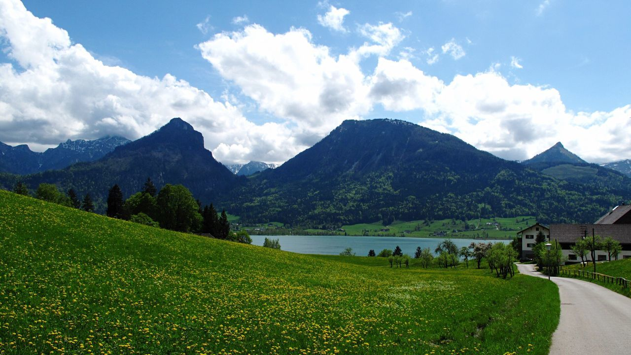 St.wolfgang Wolfgangsee Lake Wolfgang Lake Mountains Sky Yellow Flower Field Yellow Flowers Salzburg Austria The Sound Of Music Movie Scene Nature Landscape The Essence Of Summer The Great Outdoors - 2016 EyeEm Awards
