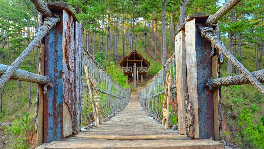 Bridge - Man Made Structure Religion Travel Destinations Outdoors Tree Architecture Day Nature No People Beauty In Nature Dalat Vietnam Bridge