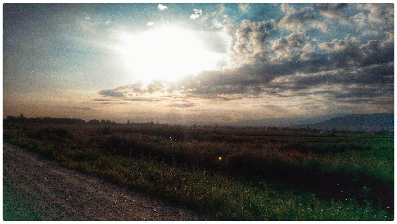 landscape, nature, field, tranquil scene, scenics, sun, tranquility, no people, grass, agriculture, sunlight, rural scene, beauty in nature, growth, outdoors, sky, road, day, plant, sunset, scenery