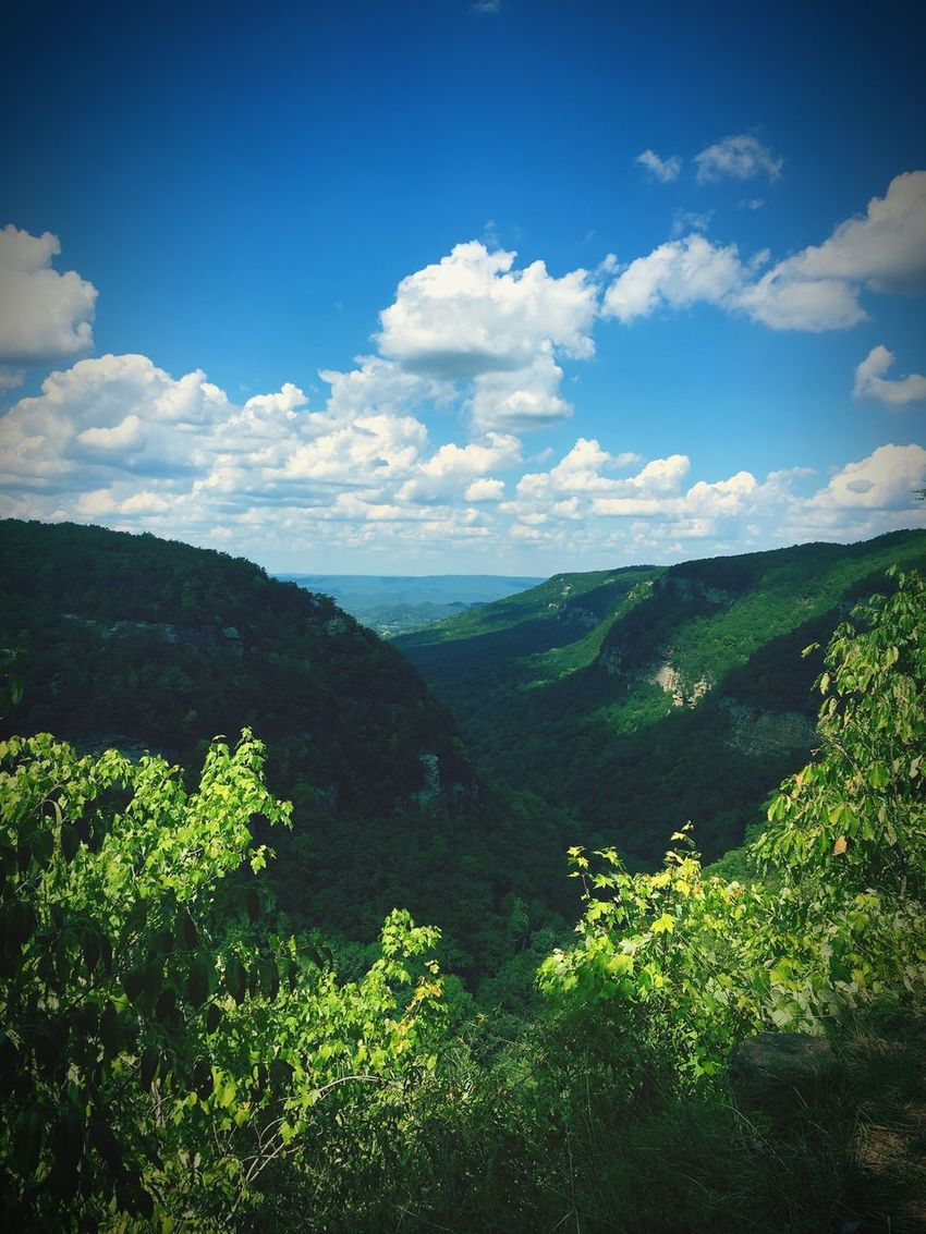 i took off after my own two feet. Cloudland Canyon Clouds And Sky Canyon Clouds Hikingadventures Labordayweekend Georgia