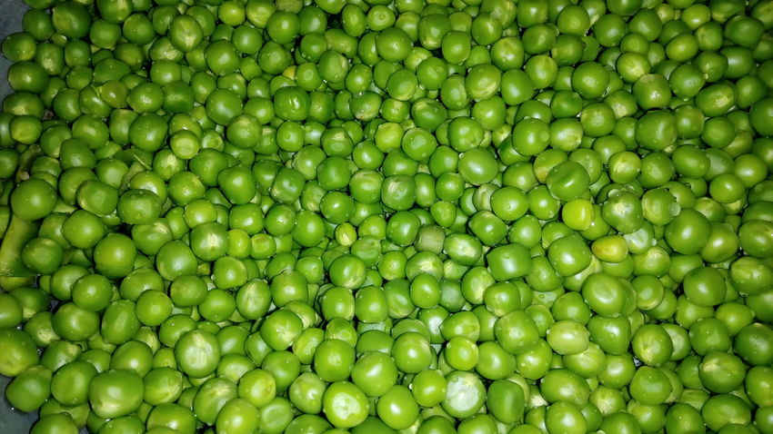 Green Color Backgrounds Full Frame Food No People Freshness Fruit Healthy Eating Close-up Nature Day Outdoors Pulses Green Peas Green Pea