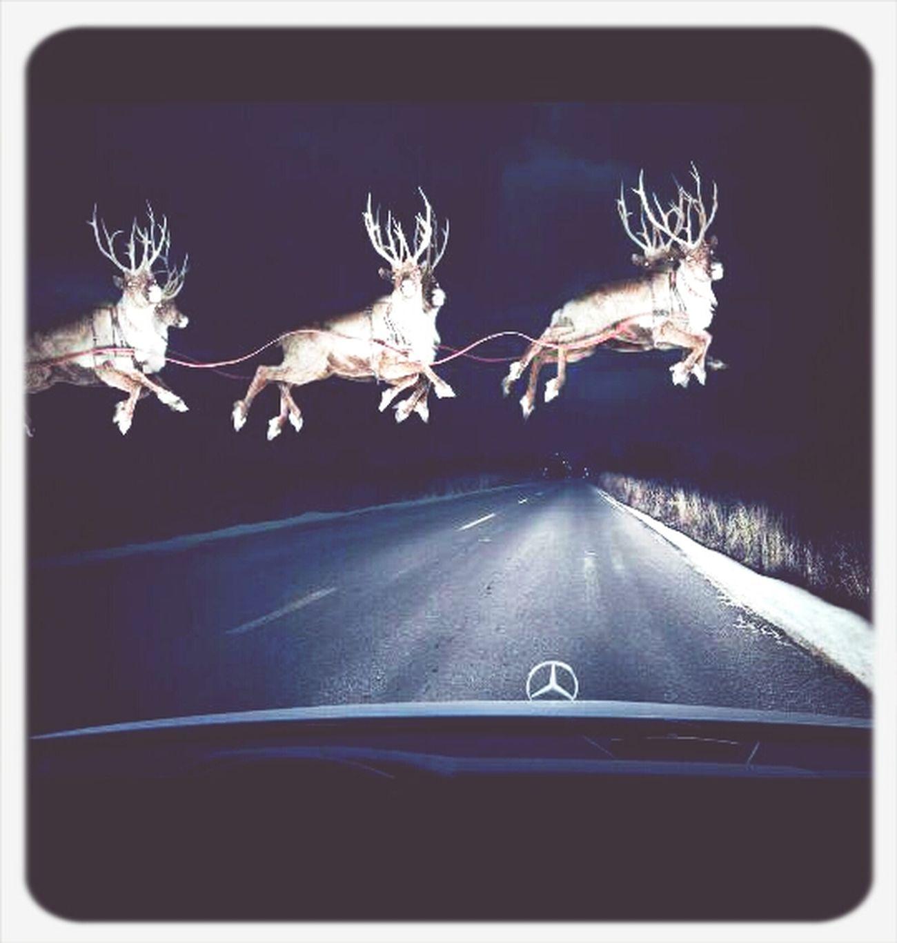 Holiday Season Its Coming,,