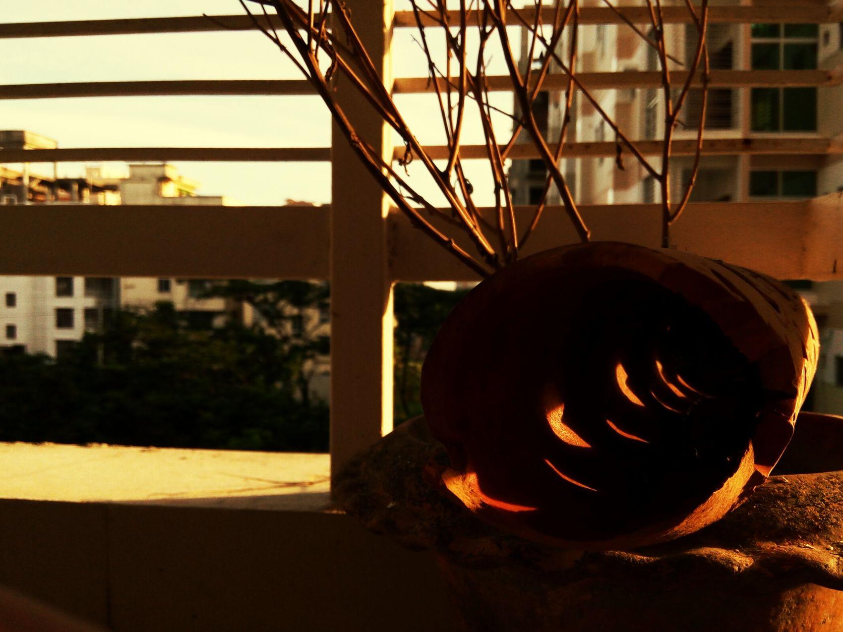 Toxic sunrise, dead night....shared coffee Sunrise Balcony Sunrise Dead Shrub Love ♥ Hate