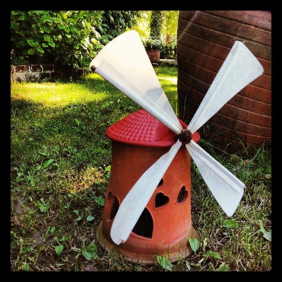 Yel değirmenlerine karşı Don Kişot muyum? Quixote DonQuixote Windmill Yeldegirmeni