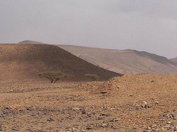 Salt - Mineral Landscape Nature Sand Dune Desert Mountain Beauty In Nature Desert