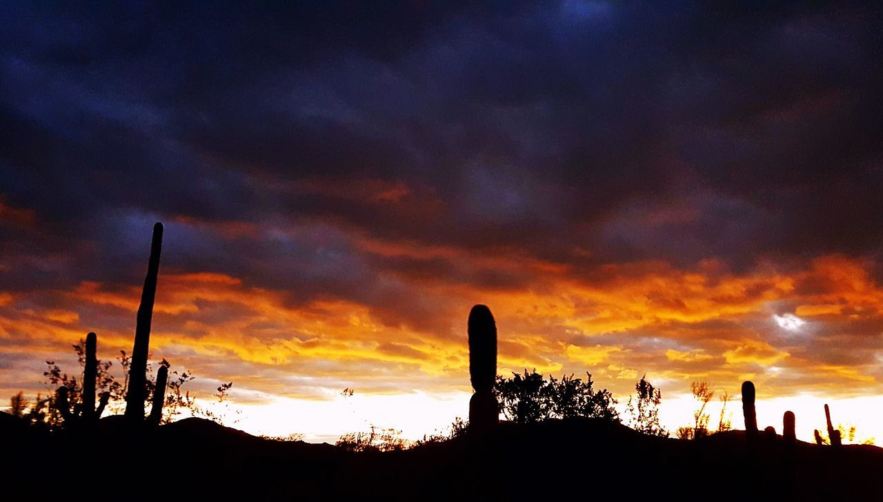 Silhouette Sky Sunset No People Low Angle View Nature Outdoors Architecture Astronomy Arizona Day Cactus Mountain Sky And Clouds Arizona Landscape EyeEm Nature Lover Klique Klique Samsungphotography Illuminated Eye4photography  Sunrise Cloudscape Eye4photography  Beauty In Nature Tranquil Scene