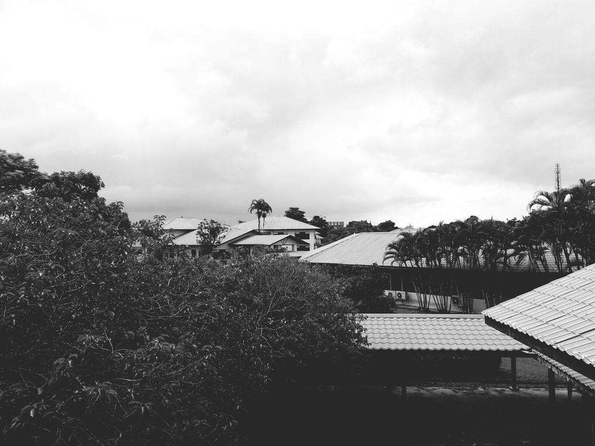 the view from dewan kuliah 2.. Unimas Blackandwhite University Campus