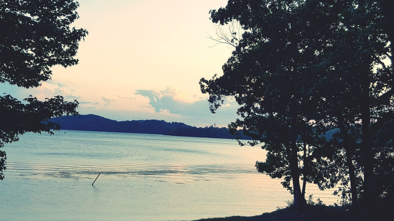 tree, sunset, scenics, nature, beauty in nature, sky, silhouette, outdoors, tranquility, tranquil scene, no people, lake, water, branch, mountain, day