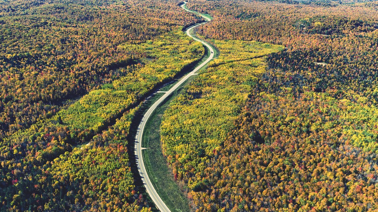 Pattern Backgrounds High Angle View Road Yellow Landscape Outdoors Green Color Day No People Nature Winding Road Beauty In Nature Drone  Aerial