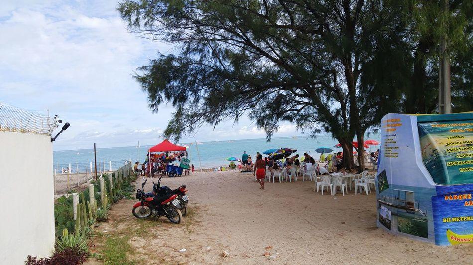 Beach Sea Summer