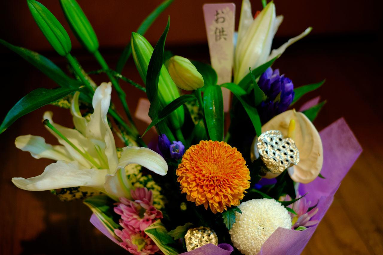 供花 Bouquet Close-up Flower Flower Head Fujifilm Fujifilm X-E2 Fujifilm_xseries Japanese Culture Plant Xf35mm お盆 供花 新盆 花