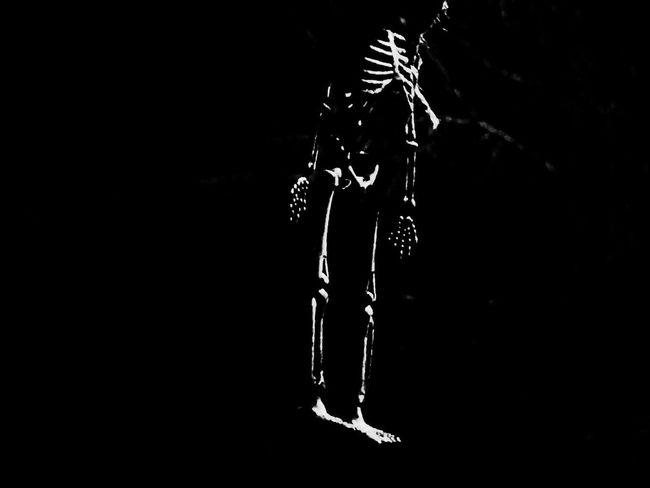 Lazy Bones.