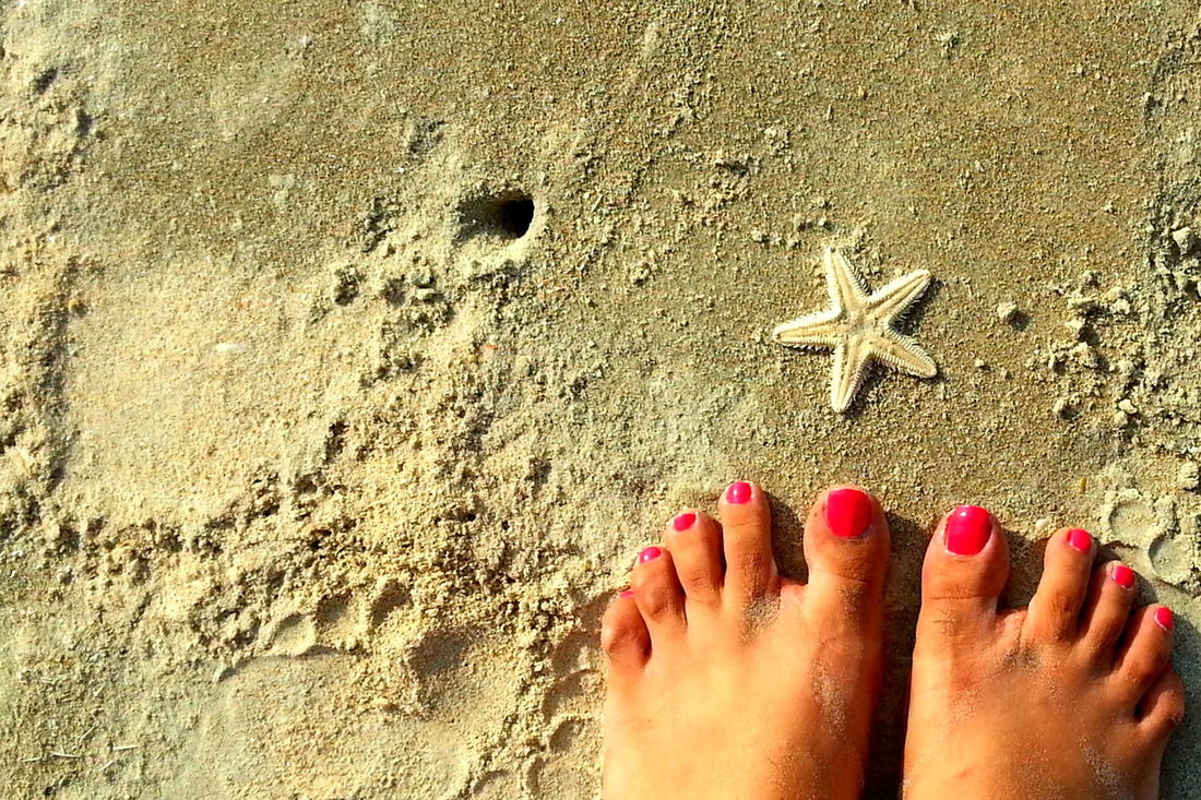 Beach Close-up Cropped Day Feet Lifestyles Nail Nailpaint Nails Nature Outdoors Part Of Person Personal Perspective Pink Nails Sand Shore Starfish  Sunlight Sunny Unrecognizable Person