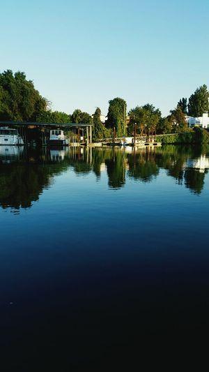 I life for the water! River Fishing Salmon Fishing California
