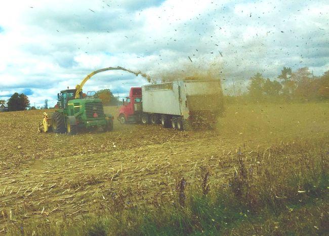 Tending To Crops Crops Cornfield Cornstalk John Deere Farm Life Farming Field Michigan United States