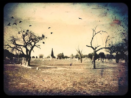 Cemetery in Sweetwater by Judy  Green
