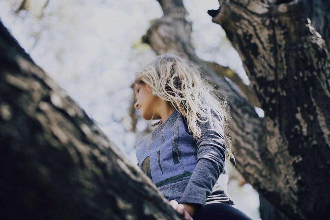 The Portraitist - 2015 EyeEm Awards Malibu Creek State Park Color Portrait Up A Tree Look Up California Open Edit
