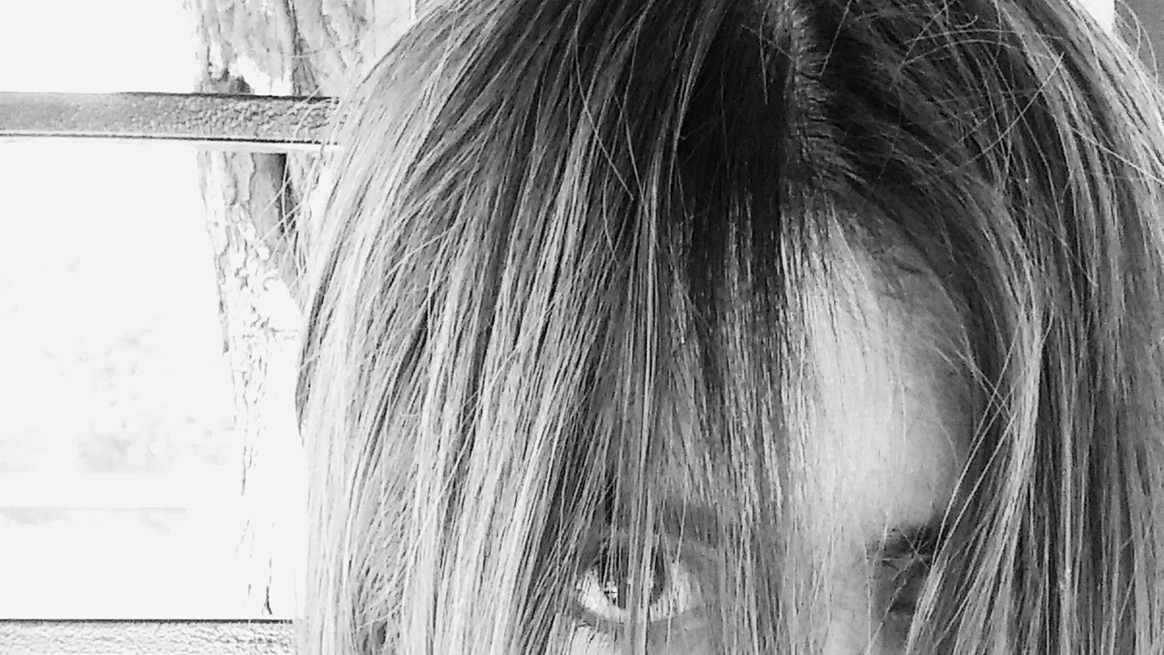 Selfdiscovery project 4. Eyes Hair Blackandwhite Black And White Hairstyles