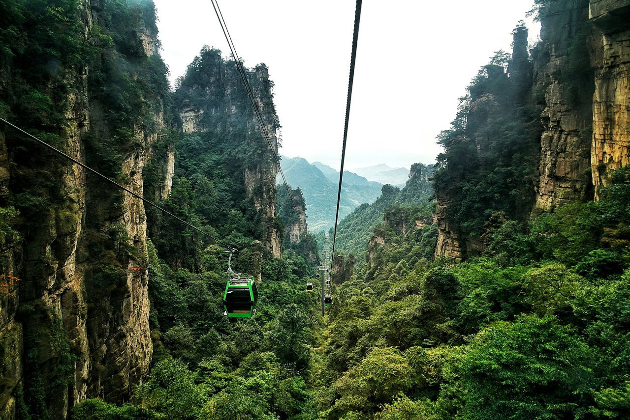 Beautiful stock photos of china, Beauty In Nature, China, Day, Forest