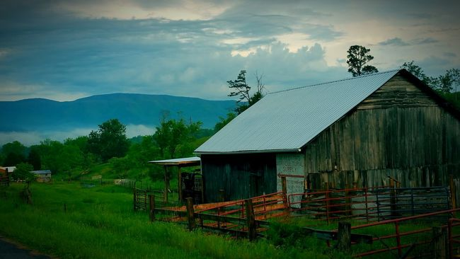 Barnaholics Barnporn Barn Barn_chasers Barnlove Barnlife Mountains And Sky Mountainscape Mountains Great Smoky Mountains  Mountain Range Mountain View Mountain_collection Mountains And Valleys Mountainlove 43 Golden Moments Eyeem Marketplace Eyeem Market Team EyeEm Market © The Eyeem Award 2016 Natures Diversity Natures Diversities Tennessee Tennessee Living Tennessee Mountains