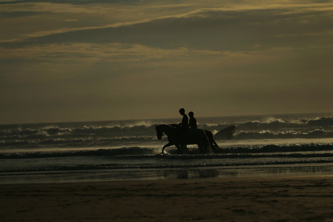 Sea Beach Sunset Wave Silhouette Water Horizon Over Water Riding Nature Horseback Riding Outdoors Adult People Sand Night Sport Adults Only Baie Des Trépassés Romantic Romantic Scenery Beauty In Nature Friends Coupel