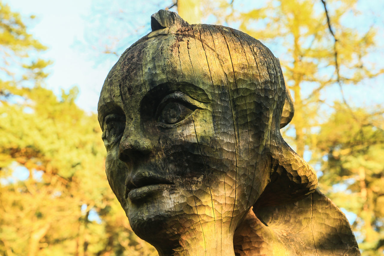 statue, sculpture, focus on foreground, art and craft, religion, day, tree, outdoors, no people, spirituality, close-up, nature