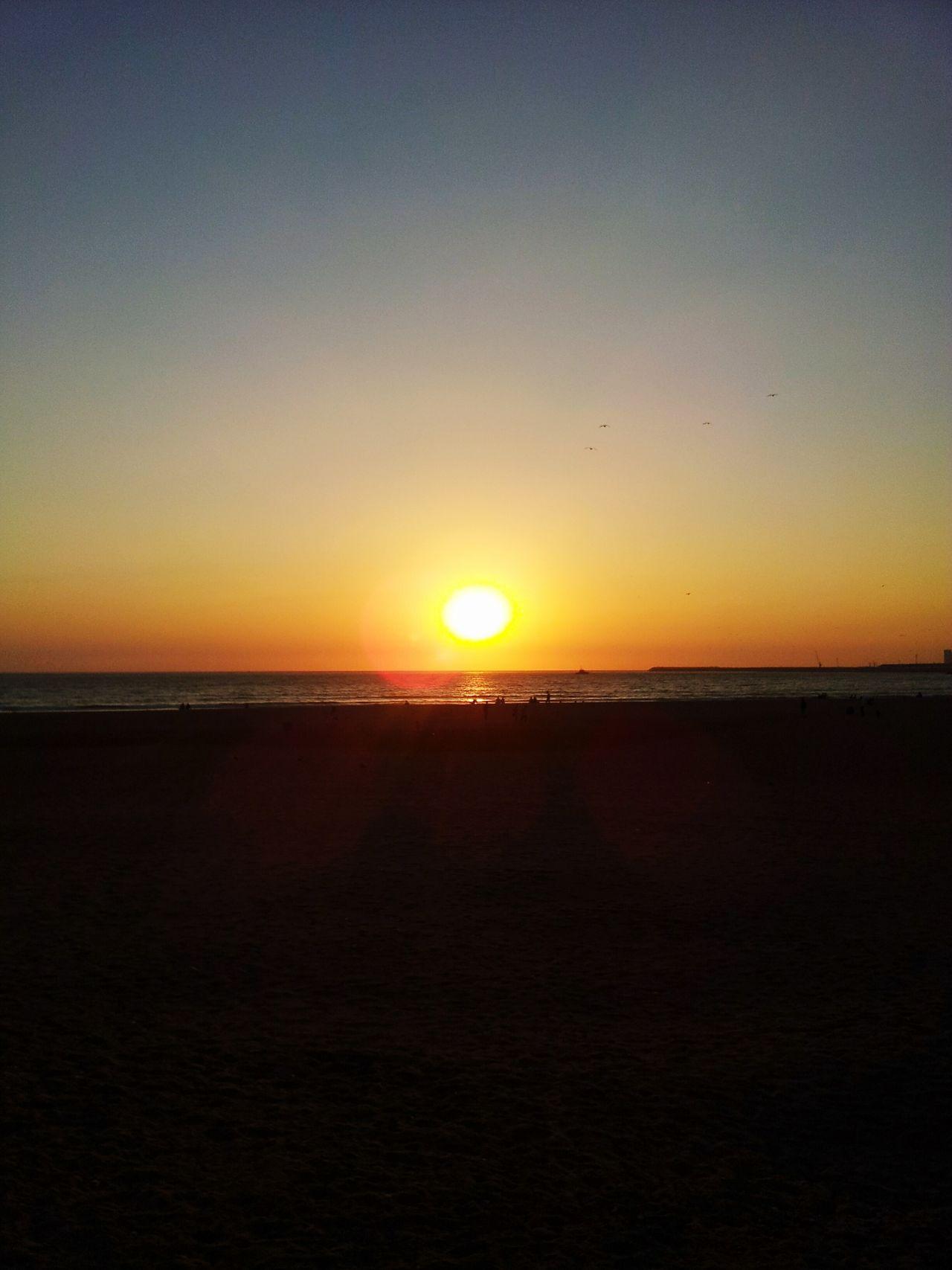 Sunset Sunset Beach Sun Horizon Over Water Sky