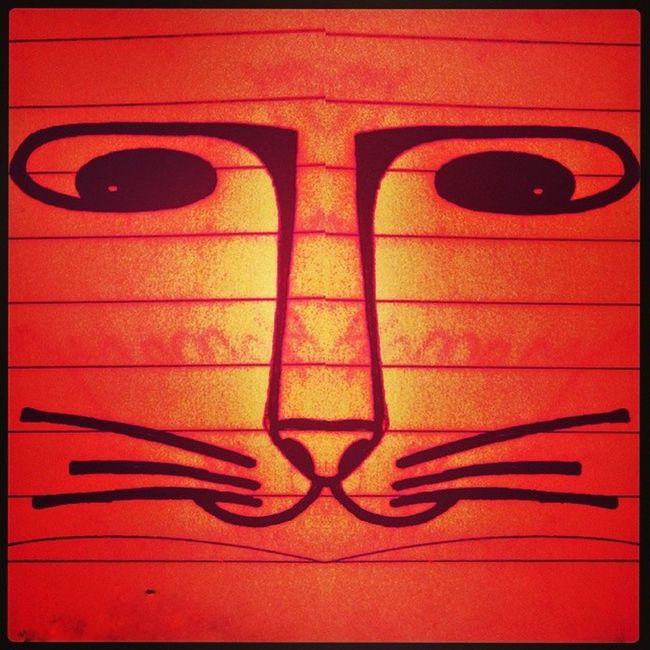 CatCatBurningBright. Catsofchai Catseriesofchaiytra Catsofmarch Catinsketch catdoodle cataday brightorange cat edited reflect symmetry instalove instalike instacat instadraw experiment ilovecats instasketch instapic catinsky catscribble
